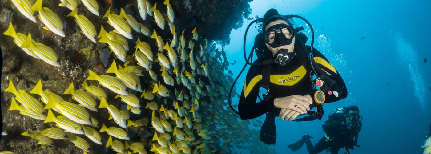 Scuba & Snorkeling Honeymoon