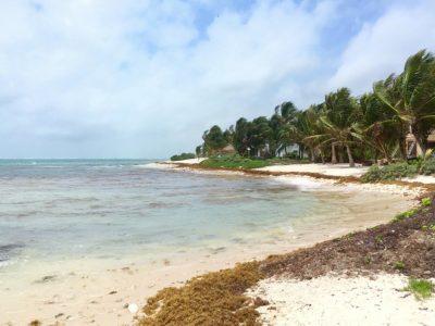 6. Tankah Bay,