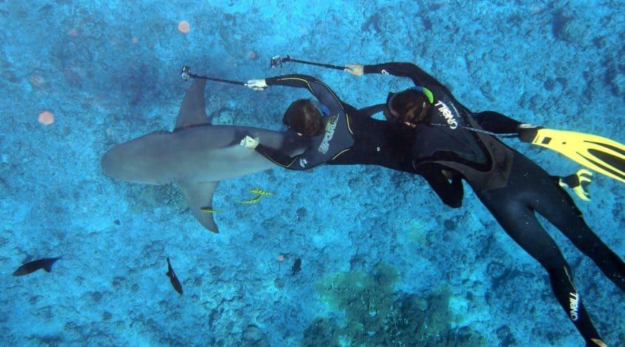Best Things to do in Tahiti on a Honeymoon