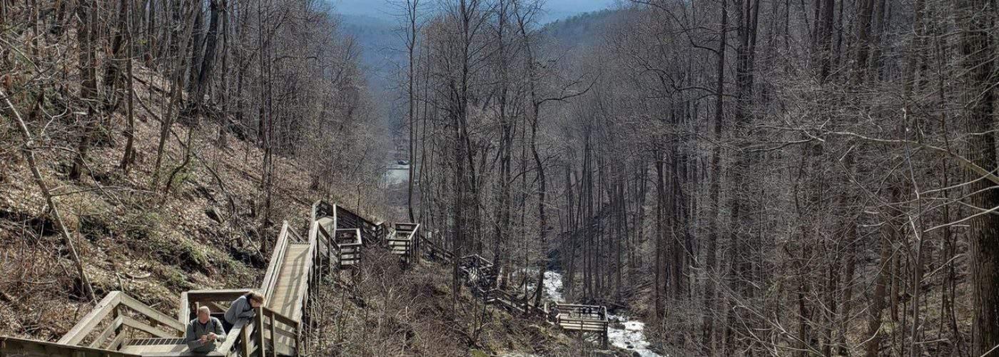 Forrest Hills Mountain Resort