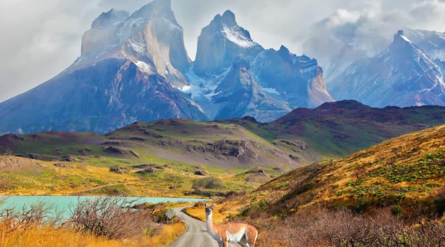 21. Patagonia